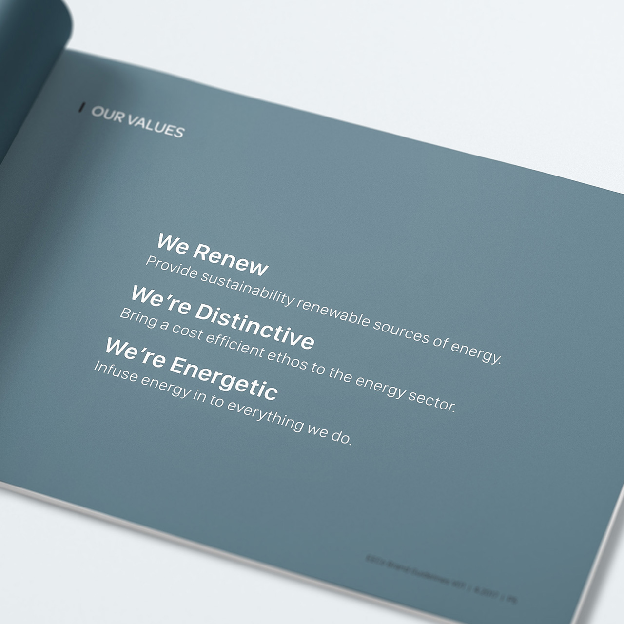 brand-guidelines1