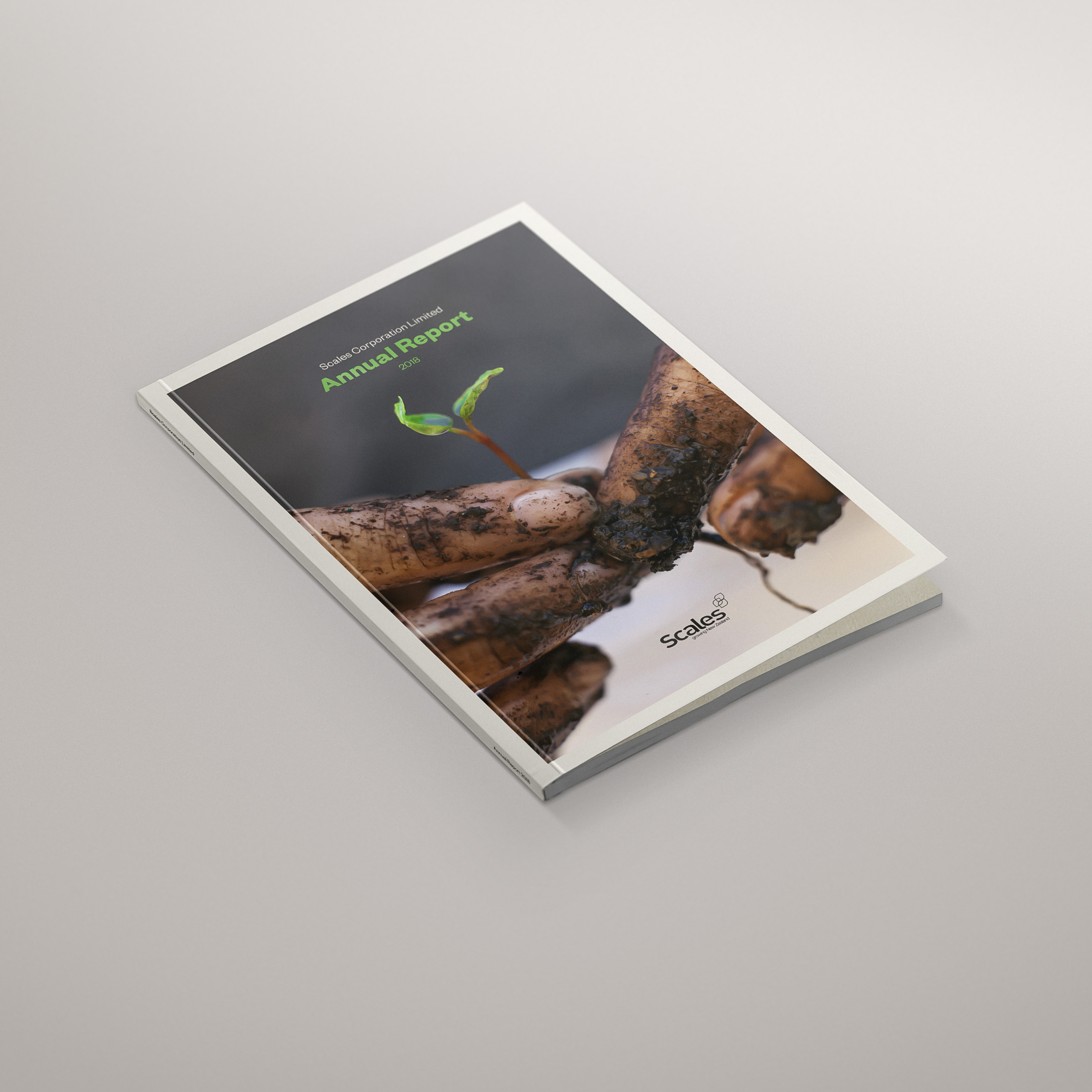 Scales Annual Report Cover Design