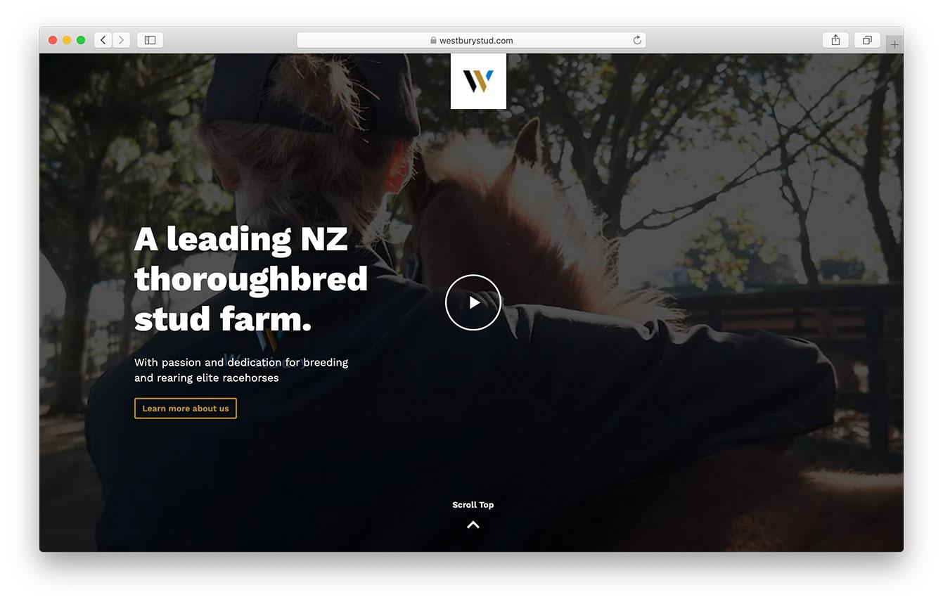 WS-website